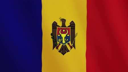 volby : Moldova flag waving animation. Full Screen. Symbol of the country.