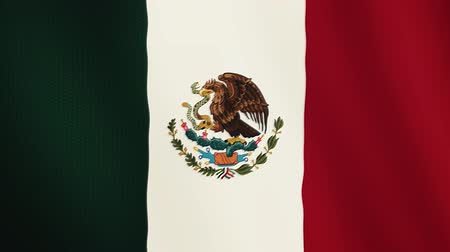 non kentsel : Mexico flag waving animation. Full Screen. Symbol of the country. Stok Video