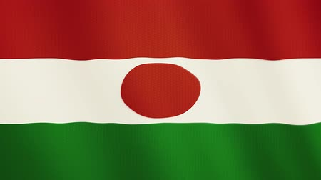 niger : Niger flag waving animation. Full Screen. Symbol of the country.