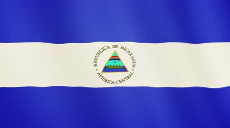 ensign : Nicaragua flag waving animation. Full Screen. Symbol of the country.