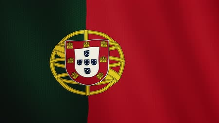 церемониальный : Portugal flag waving animation. Full Screen. Symbol of the country.