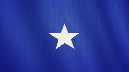 стандарт : Somalia flag waving animation. Full Screen. Symbol of the country.