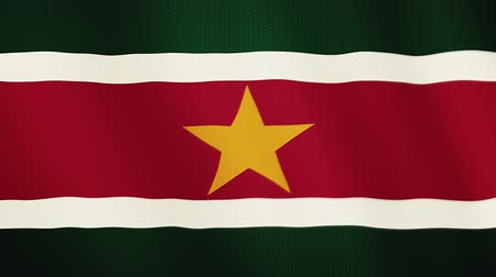 hymn : Suriname flag waving animation. Full Screen. Symbol of the country. Stock Footage