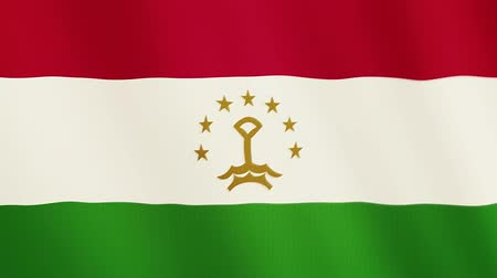 allegiance : Tajikistan flag waving animation. Full Screen. Symbol of the country. Stock Footage