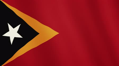 east timor : East Timor flag waving animation. Full Screen. Symbol of the country. Stock Footage