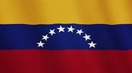 ensign : Venezuela flag waving animation. Full Screen. Symbol of the country.