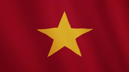 правительство : Vietnam flag waving animation. Full Screen. Symbol of the country. Стоковые видеозаписи