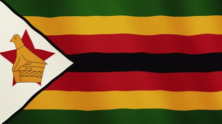 záhyby : Zimbabwe flag waving animation. Full Screen. Symbol of the country.