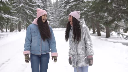 gt : Two girlfriends walk in the woods in the winter having a good mood Stock Footage