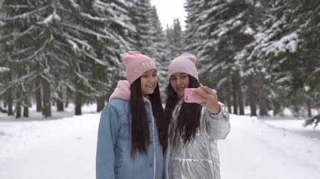 gt : Two girlfriends make selfie using smartphone while standing in the winter forest