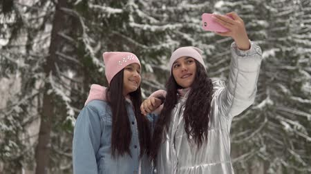 gt : Two girlfriends make selfie on the background of the winter forest using a smartphone. 4K Stock Footage