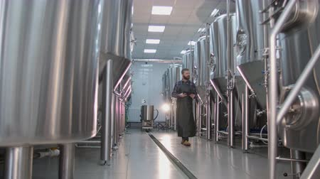 A male brewer with a red beard walks through a craft beer factory and checks the testimony of beer tanks using a tablet Stock Footage