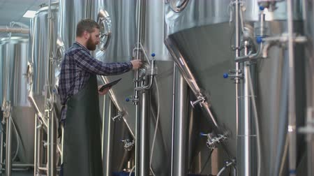cervejaria : Brutal Male brewer with a beard controls the readings of devices on beer tanks using a tablet. Craft beer production Stock Footage