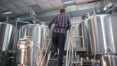 A male brewer in an apron with a beard looks inside the beer tank and controls the brewing process.