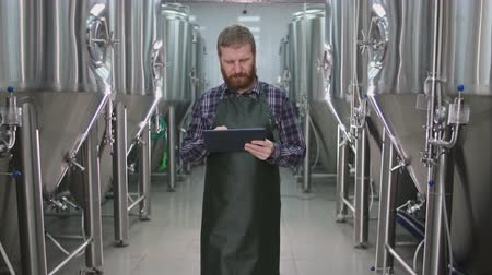 A male brewer with a beard passes by beer tanks and checks the readings using a tablet Wideo