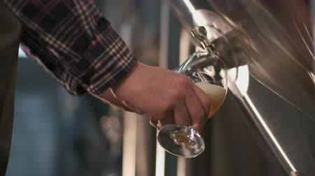 A male brewer pours beer from a beer tank into a glass for tasting. Close-up