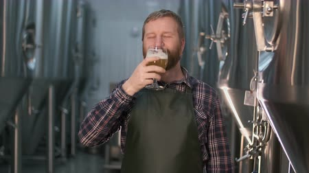 Portrait of a successful businessman brewer with a beard demonstrates the quality of freshly brewed beer in a glass from a beer tank while standing in a beer factory
