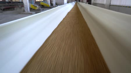 maquinaria : Malting plant. Barley grains transported on conveyor. Grain conveyor on the elevator