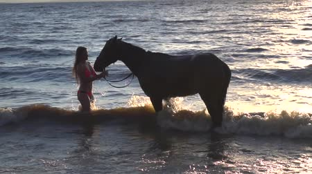 отскок : Young sexy woman dressed bikini rest with horse in the river water sunset Стоковые видеозаписи