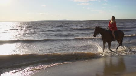 lovas : Woman riding on horse at river beach in water sunset light