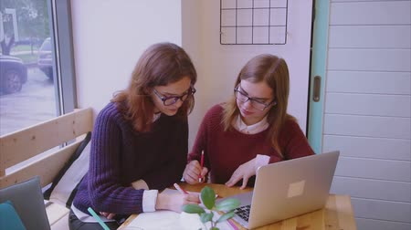 estudioso : Female college students studies in the cafe two girls friends learning together Stock Footage