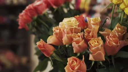 smell : close up shot of flowers of yellow and orange, roses with small buds have a delicious smell, it is natural flowers grown in a cultivated place, roses have green petals