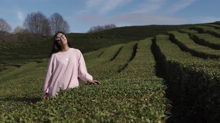 население : a young woman in sun glasses is on the nature, the lady is standing near long fields with tea bushes, the lady enjoys a beautiful view