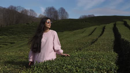 labirent : Portrait of a charming brunette woman in sunglasses standing in giant field on mountains. Slightly touching the top of bush. Nice time outdoor.