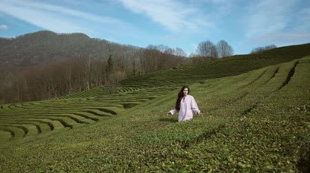 labirent : Attractive brunette woman wearing sunglasses spending free time on mountains. Enjoying the day on tea plantation. Walking amont bushes. Stok Video
