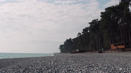 seasons changing : rocky beach in the evening, the sea looks calm, beautiful water landscape in the summer or spring time, pine trees stand along the coastline Stock Footage