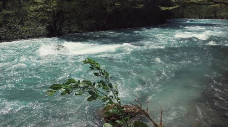 natural resource : a fast river tends to fall into a lake or the sea, nature in the autumn or spring time, there is no foliage on the trees, its a warm day Stock Footage