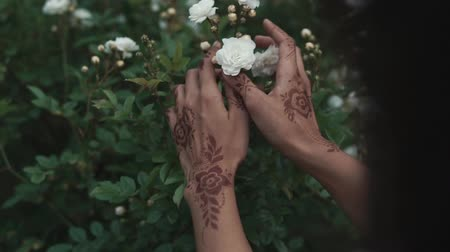 szerény : close up shot of the womans hands, who touches the roses, the lady has tattoos made of henna, which are called mehendi, they bring good luck Stock mozgókép
