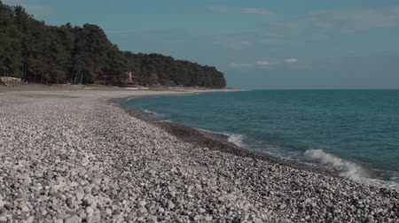 созерцать : Quiet landscape with sea shore and forest in summer day. Waves are crashing over gravel beach, amazing nature