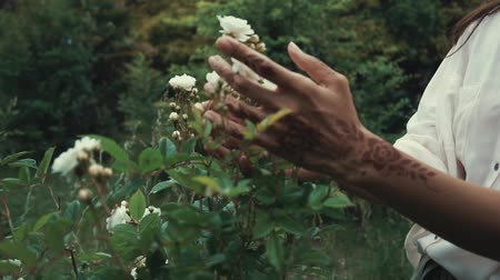 díszített : Girl is stroking small white blossoms on a bush in garden. Close-up of her hands with mehendi on skin