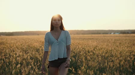 acariciando : Pretty lonely young woman is strolling in countryside in evening. She is stepping on rye field and stroking ears by hand, sunset in background Stock Footage