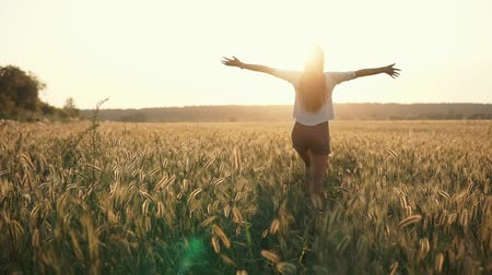 acariciando : Lonely girl is strolling in field in summer dawn. She is standing back and rising hands up cheerfully, view on her silhouette Vídeos