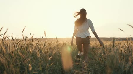majestátní : Free young woman running fast in open field, warm summer weather. Shot from behind of running towards sunset girl, majestic nature. Dostupné videozáznamy