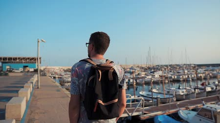 izlenim : Man is strolling on small seaport area in sunny day. He is looking around, back view, inspiring and impressing Stok Video