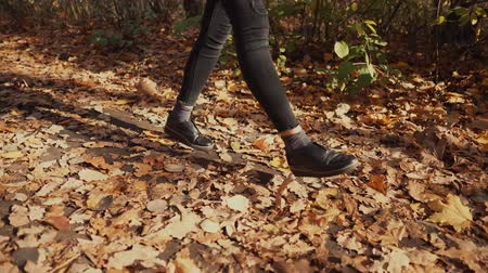 folhas : Young woman is strolling in autumn park in sunny day. She is waving legs funny and kicking dry yellowed leaves on ground, close-up of feet
