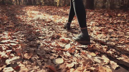 folhas : Detail view of shoes of alone woman, strolling in sunny autumn park over dried leaves, back view. She is stepping on cold ground, sun is shining bright