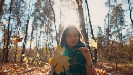 ayrılmak : Brunette woman is admiring yellow maple leave and moving it in front of face. She is sitting crossed legs on ground in autumn park in sunny day Stok Video