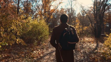 o : Male passerby is walking alone in picturesque park area in fall day. He is carrying backpack and admiring nature, back view