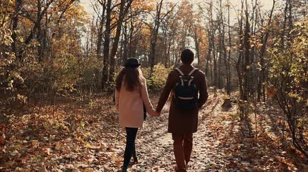 picturesque view : Couple of man and woman are strolling together in fall forest in sunny day. They are holding hands and chatting cheerfully, back view
