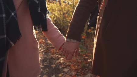 csatlakozott : Loving romantic couple is strolling together in woodland in autumn day. Close-up of their holding hands in front, picturesque sunny landscape Stock mozgókép