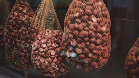 requintado : Escargot snails are selling in a food market. Many of edible snails are laying in big bag hanging in a showcase, gourmet foods and exquisite delicacy