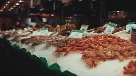 prawns : Great variety of fresh seafood lying on the ice on display. Different kinds of fish and shrims with price tags.