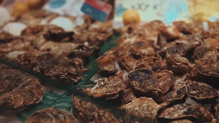 aphrodisiac : Fresh oysters are selling in a store with seafood. Many of delicatessen are lying on a counter, close-up view, rich choice