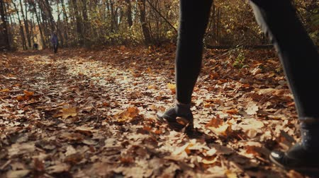 but : Woman happily walking on path in a autumn forest kicking leaves on the ground. Bright nature in fall, girl on a walk.