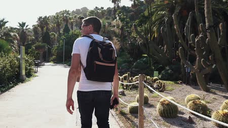kaktus : Male traveler is strolling on path in botanical garden in summer day, back view. He ia admiring nature of cactus park in Barcelona