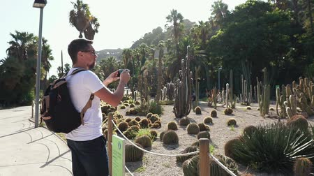 kaktus : Shot from behind of a man spending quality time on vacation in cactus park, looking at exotic plants and taking pics on smartphone. Tourist on Europe trip in Barcelona.